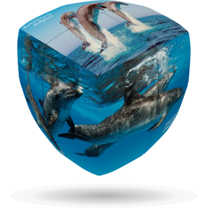 V-Cube Dolphin - 3 x 3 Pillow Puzzle Cube